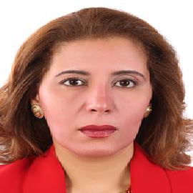 Nour Sh. El-Gendy