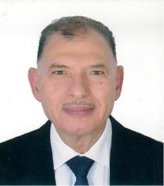 Amin Gohary