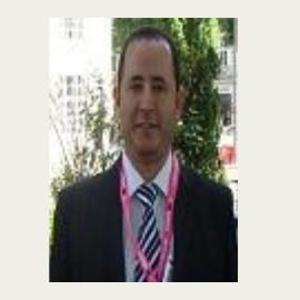 Ahmed A Allam