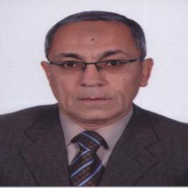 Prof. Dr. Baher Effat